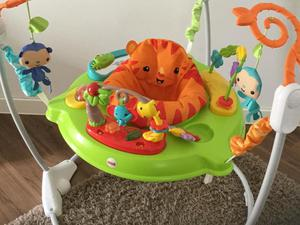 fisher price rainforest bouncer instructions